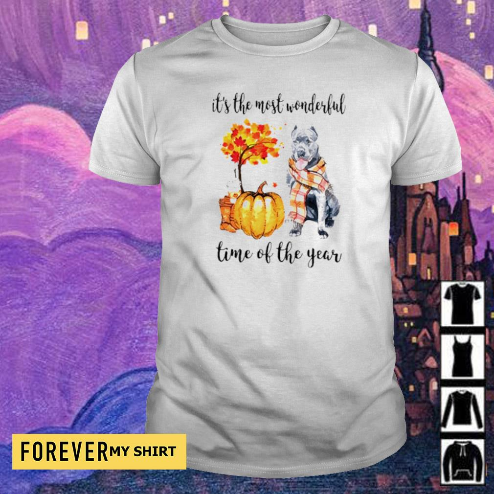Pitbull Fall pumpkin it's the most wonderful time of the year shirt
